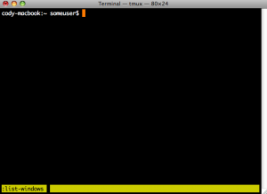 Terminal Multiplexer - Interactive Prompt