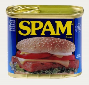 I do not like SPAM.